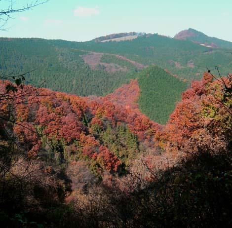 Mountains between Gyoda and Chichibu