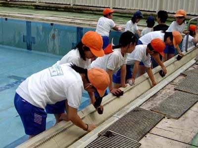 Go Nensae Cleaning Pool